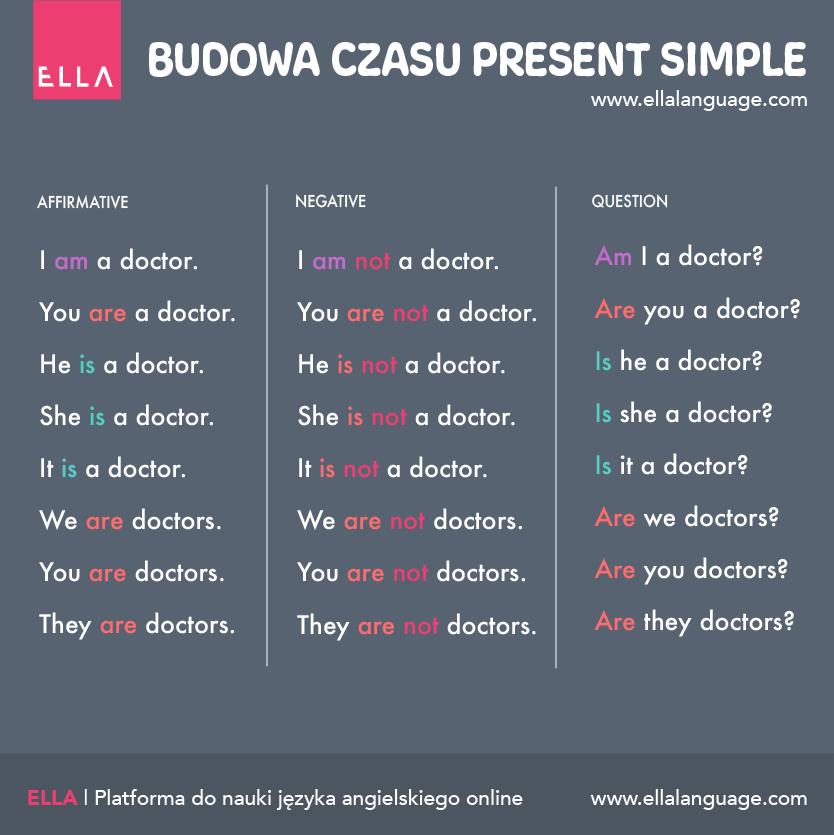 Budowa zdania w Present Simple